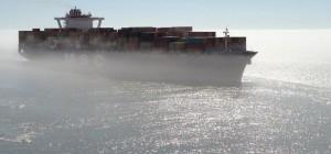 13.08.msc_fog