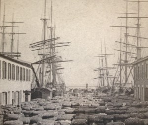 Cotton waiting to be loaded at Adgers Wharf, Late 1800's.